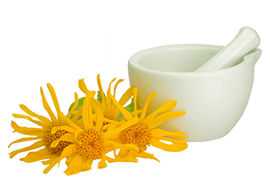 Arnica Montana Flower Extract - Arnica Montana Flower Extract