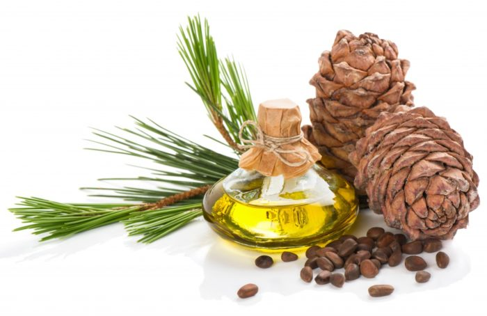 Cedrus Atlantica Wood Oil 700x454 - Cedrus Atlantica Wood Oil