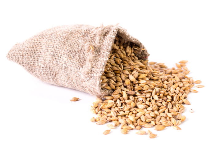 Secale Cereale Seed Extract 700x467 - Secale Cereale Seed Extract