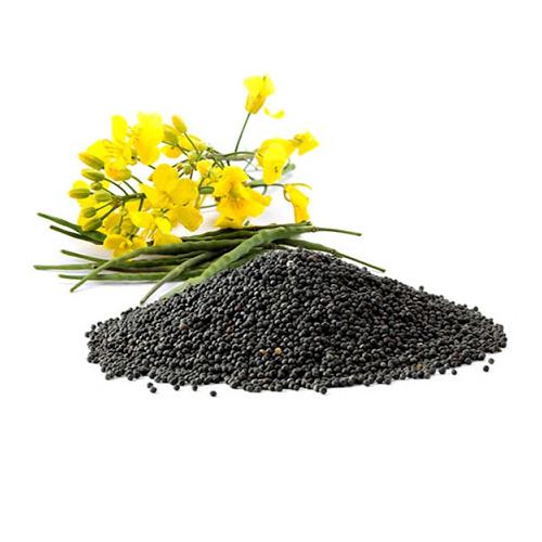 brassica seed oil - Гель для бритья Конопля и Хмель LEVRANA
