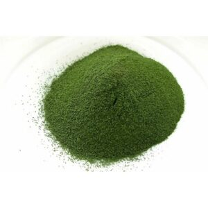 Chlorella Vulgaris Extract